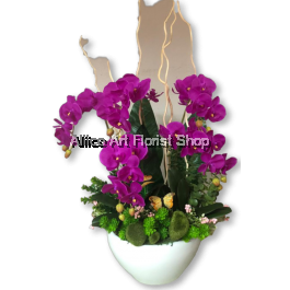 CHA CHA COLA ARTIFICIAL FLOWER